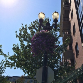 flower lamp post