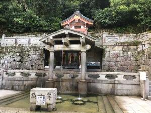 purified water fountain
